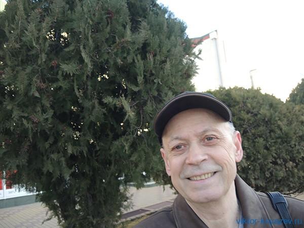 Первый Новый год в Новороссиийске рис 4